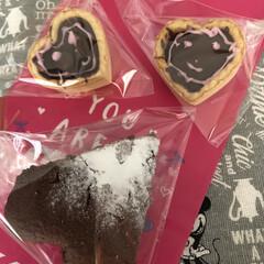 チョコタルト/ガトーショコラ/バレンタイン2020 もちろん手作りもあげましたよ😍❤️  わ…