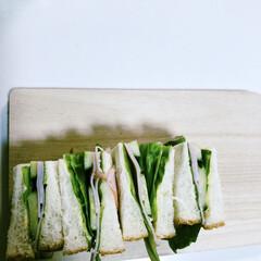 サンドウィッチ/おうちごはん/ランチ/朝ごパン/野菜を食べよう #お家時間  娘が作ったサンドウィッチ♡…