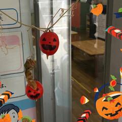 からすうり/保育園の教室の入り口/ハロウィン ハッピーハロウィン🎃