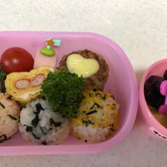 保育園の月一弁当/3歳10ヶ月 娘/お弁当/フード 昨日娘が保育園のお散歩で摘んできた、つく…