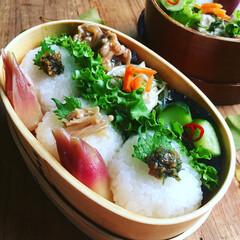 お昼ごはん/秋盛り弁当/お弁当/フード おにぎり弁当  ▫︎大葉味噌おにぎり ▫…