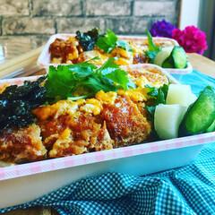 チキンカツ丼/お弁当/フード 『チキンカツどーん弁当』  お惣菜のチキ…