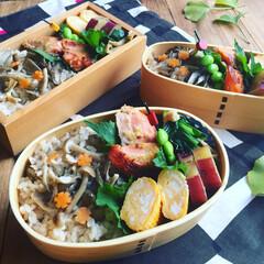 秋の味覚/お昼ごはん/秋盛り弁当/お弁当/フード 秋の味覚盛りだくさん #秋盛り弁当  ▫…