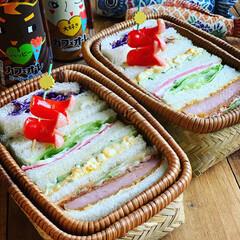サンドイッチ弁当/春フォト100枚チャレンジ/おべんとう/お昼ごはん/春のフォト投稿キャンペーン/GW/... サンドイッチ弁当🥪