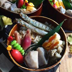 お昼ごはん/お弁当/フード/秋盛り弁当/おうちごはん 『和食弁当』 ▫︎炊き込みご飯  ▫︎し…