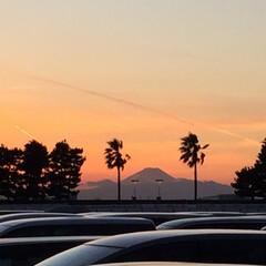 ディズニーランド/秋/おでかけ ディズニーランド駐車場から見た夕日  車…