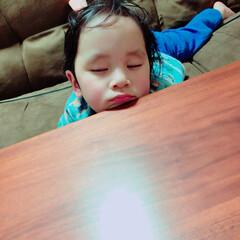 枕/我が家のテーブル/ニトリ 我が家のニトリテーブルは 息子の枕にもな…