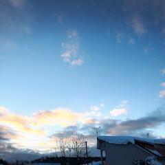 夕日/冬の一枚/冬 実家の前から見えた夕日。 冬の寒さで澄ん…