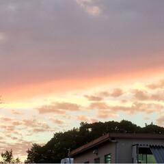 夕焼け/風景/空/秋 秋の夕空です❗️ あんまりキレイだったの…