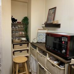 カップボード/キャビネット/ワゴン/キッチン雑貨/キッチン/DIY/... せまいキッチンをコツコツとDIYしてます…