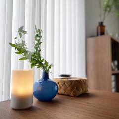 枝モノ/グリーン/コデマリ/インフルエンザ対策/アロマディフューザー/無印良品/... コデマリ。 久々にグリーンを買って部屋を…