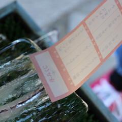 奈良/シンプルライフ/おみくじ/シンプルな暮らし/暮らし/お出かけ/... 奈良散策 氷室神社のおみくじ