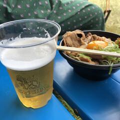 フェス飯/フェス/令和元年フォト投稿キャンペーン/令和の一枚/フォロー大歓迎/LIMIAファンクラブ/... フェス飯 ビールが美味い!!……てなりた…