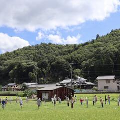 帰省/盆休み/夏休み/かかし/令和の一枚/フォロー大歓迎/... かかしがいっぱい 田舎の風景