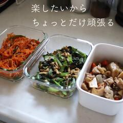 野田琺瑯 WRF-LL ホワイトシリーズ レクタングル深型 LL | 野田琺瑯(食品保存容器)を使ったクチコミ「楽したいから、ちょっとだけ頑張る。 子供…」