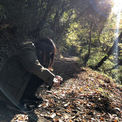 ハイキング/お散歩/紅葉/カメラ女子/カメラ散歩/リミアの冬暮らし/... 何が撮れたかな?