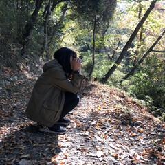 カメラ散歩/カメラ女子/紅葉/お散歩/ハイキング/リミアの冬暮らし/... ハイキングに♩