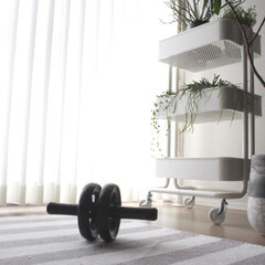 ダイエット/腹筋ローラー/体づくり/シンプルライフ/暮らし/IKEA ダイエット頑張ります(ง •̀_•́)ง