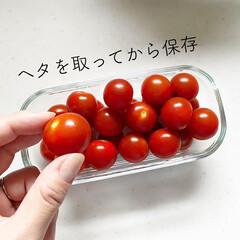 iwaki/保存容器/整理収納/夏野菜/野菜収納/トマト保存/... ミニトマトはヘタをとってから保存します。…(1枚目)
