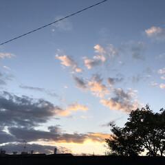 夕暮れ/夕焼け/冬空/空/リミアな暮らし/暮らし 冬の空ですね。