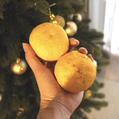 柚子/柚子湯/冬至/おうち/2018/フォロー大歓迎/... 今日は【冬至】ですね。 夜はかぼちゃ食べ…