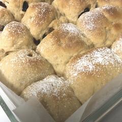 ずぼらレシピ/料理嫌い/ズボラ/手作り/ちぎりパン/パン/... 料理嫌いでも簡単に出来るちぎりパンにハマ…