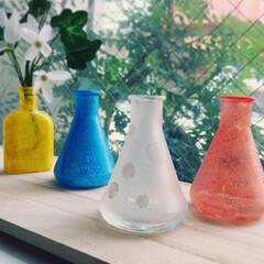 ターナー/ターナー色彩/ガラスペイント/ミルクペイント/カラースパイス/ターナーカラースパイス/... ガラスペイントとミルクペイントを使ってガ…