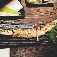 日本酒/秋刀魚の塩焼き 初モノ。秋刀魚。美味。 日本酒は羽根屋、…