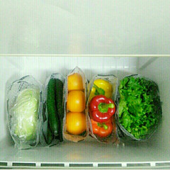 収納グッズ/収納アイデア/収納/冷蔵庫収納/冷蔵庫/仕切り/... キャンドゥの水切り袋で、野菜収納…