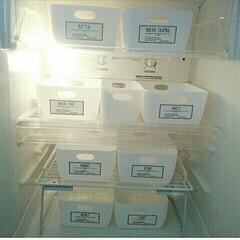 18年前の冷蔵庫/冷蔵庫/うちの冷蔵庫/カトレケース/Seria(セリア)/Seria/... うちの冷蔵庫の中…  seriaのカトレ…