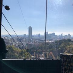 南京町/神戸 ハーブ園/おでかけ/風景/冬 LIMIAの皆さまーっ♥️ あけましてお…(6枚目)