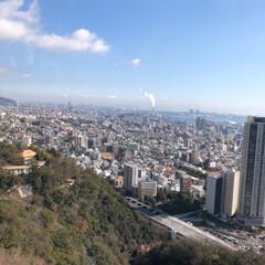 南京町/神戸 ハーブ園/おでかけ/風景/冬 LIMIAの皆さまーっ♥️ あけましてお…(7枚目)
