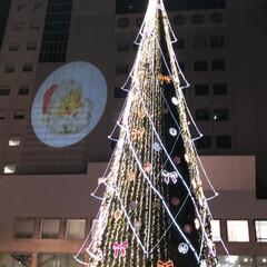 かぶりものねこ/観覧車/ペット/猫/クリスマスツリー/クリスマス こんばんは❤ 先日のphotoへの コメ…(5枚目)