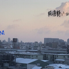 うっすら雪 おはようございます(*´∀`*) 我が家…