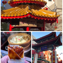 南京町/神戸 ハーブ園/おでかけ/風景/冬 LIMIAの皆さまーっ♥️ あけましてお…