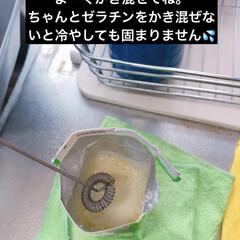 新しい生活様式/コロナに負けるな/がんばれ日本/豆乳プリン 豆乳プリン🍮  私の口には一口も入らず😅…(6枚目)