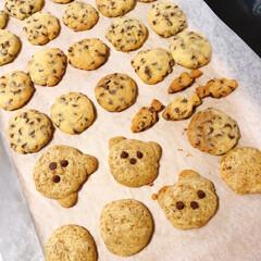 がんばれ日本/お家で過ごそう/コロナに負けるな/クッキー/餃子 昨日は、餃子作り🥟 本日は、クッキー作り…