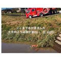 避難解除/全員無事です 台風過ぎましたね🌬  昨日の避難騒ぎから…(4枚目)