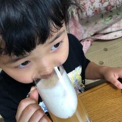 なんちゃってビール/クレヨンしんちゃん/子供向けお菓子/フード/スイーツ 昼間からグビグビっと🍺飲む下2人   っ…
