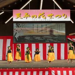 ケイキ/感動のステージ/天平の花祭り/フラダンスイベント/春のフォト投稿キャンペーン/ありがとう平成 🌺フラダンスのイベント🌺        …