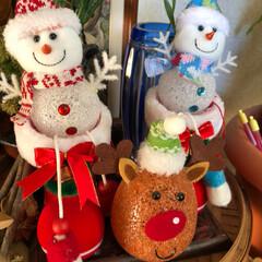 プレゼント/手紙/内緒の話/雪だるま/トナカイ/クリスマスツリー/... やっと我が家もクリスマス🎄 オーナメント…(3枚目)