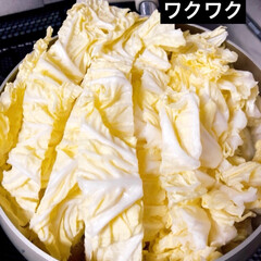シチュー/白菜/グルメ/フード/おうちごはん/おうちごはんクラブ 大きな白菜を頂いたので、何を作ろう? 土…