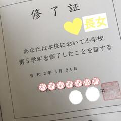 桜/修了式/菜の花/散歩 🌸お花見🌸  いつもの散歩コース🚶♀️…(4枚目)