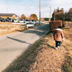 ダウン症/ダイエット/冬/おうちごはん 次女のスクールバスのお迎え🚌は、ほぼ毎日…(1枚目)