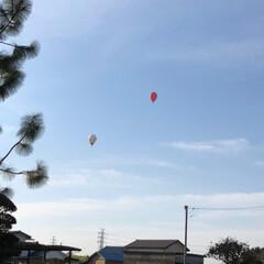 新学期準備/菜の花/桜/バルーンレース/気球/春のフォト投稿キャンペーン/... 朝起きて、カーテンを開けると空に気球があ…