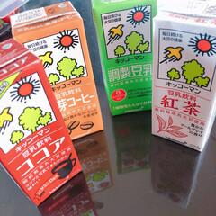 新しい生活様式/コロナに負けるな/がんばれ日本/豆乳プリン 豆乳プリン🍮  私の口には一口も入らず😅…(2枚目)