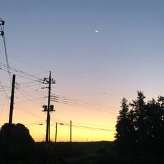 味噌漬け/コーヒーゼリーは園児全員分/焼きそば/マグロのたたき/ウインナー/チキンナゲット/... 朝焼けの綺麗な空😌 今日は待ちに待った、…