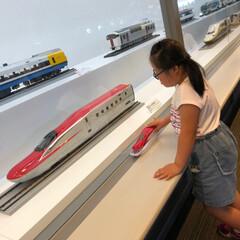 鉄道博物館/女子旅行/おでかけ/旅行/夏のお気に入り 本日…  ノリと勢いで三姉妹連れて 鉄道…(5枚目)