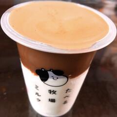 ファミマ/コーヒー/食べる牧場ミルク/グルメ/フード/スイーツ 食べる牧場ミルク🥛 これやりたかったんだ…