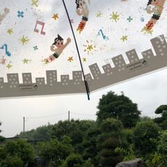 カタツムリ/梅雨の晴れ間/散歩/雨季ウキフォト投稿キャンペーン/風景 本日朝より 地区の奉仕清掃しかし、雨が止…